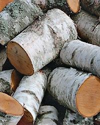 Березовые дрова в чураках