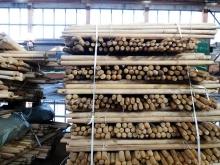 Готовые к отгрузке деревянные черенки